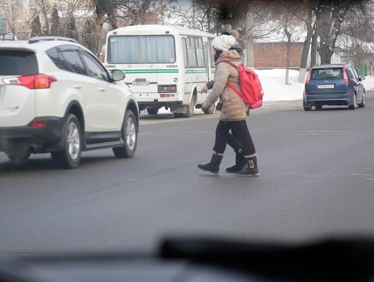 Внавигаторах поБелгородской области отметят, гдедорогу часто переходят дети
