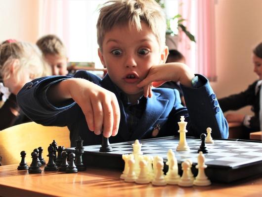 Королёмполбу. Какбелгородские первоклассники учатся играть вшахматы