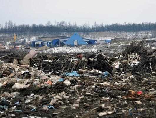 Потребованию Россельхознадзора вБелгородской области ликвидировали 13свалок