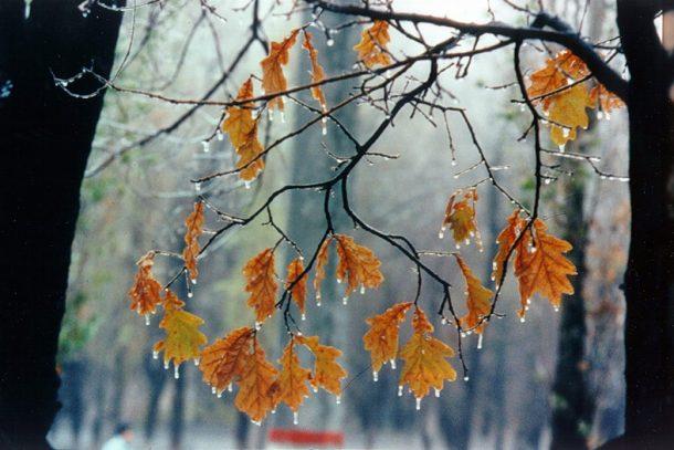 Погода в Первоуральске: прохладно, но солнечно
