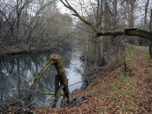 Чёрные воды. Как вСтаром Осколе чистую речку превратили всточную канаву