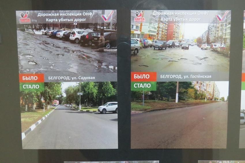 Белгородские активисты ОНФдовольны борьбой снезаконными свалками
