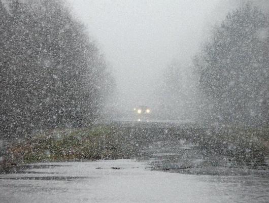 ВБелгородской области ожидаются мокрый снег сдождём изаморозки
