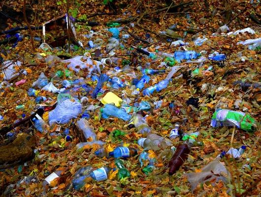 Хоровод вокруг свалки. Ктоикогда уберёт мусор вБатрацкой Даче