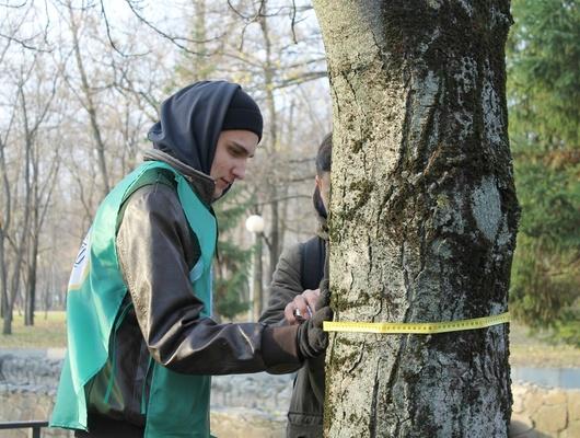 Хочу, чтобы был зелёным. Зачем помечают деревья вбелгородском парке Памяти