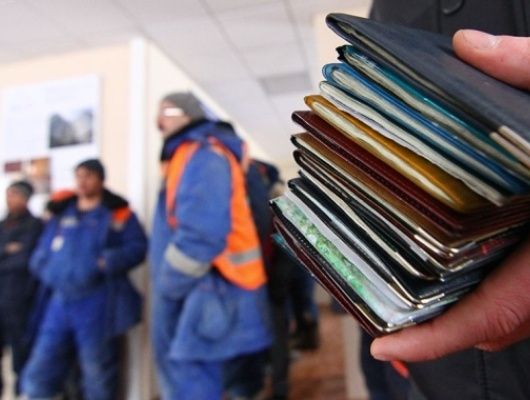 Сначала года 6780 мигрантов получили трудовые патенты вБелгородской области