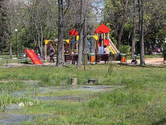 В парке Победы Белгорода установят систему дренажа