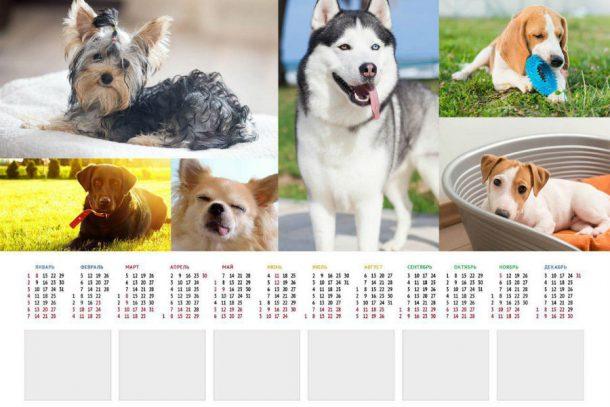 Символ года: ваша собака