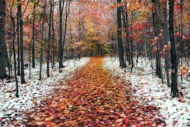 Погода в Первоуральске: тепло и пасмурно