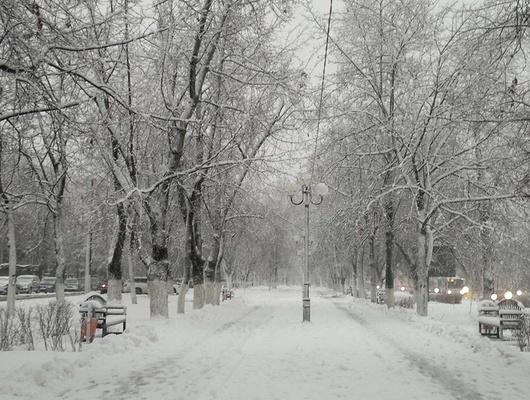 В Белгородской области ожидаются мокрый снег, дождь и ветер