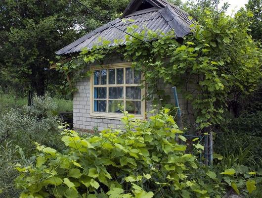 Сначала года вБелгородской области ограбили 226дач истроящихся домов