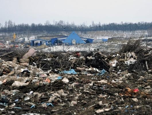 «Экотранс» оштрафовали на100тысяч рублей запожар насвалке