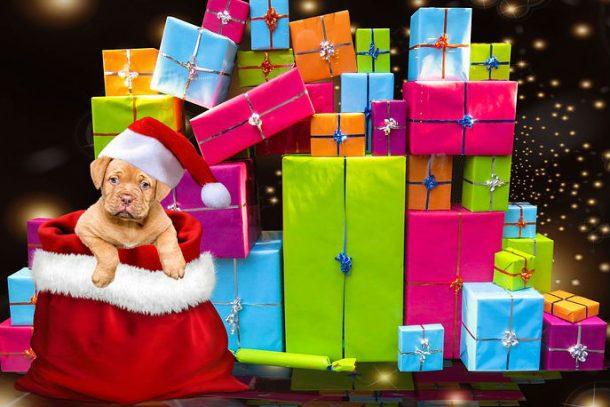 Подарки от Деда Мороза — в магазине KURNOSIKU.RU
