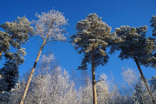 Погода в Первоуральске: в выходные можно и не сидеть дома
