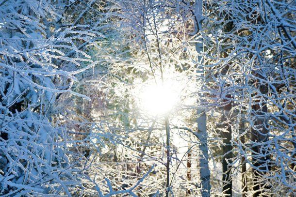 Погода в Первоуральске: предновогодняя неделя будет морозной